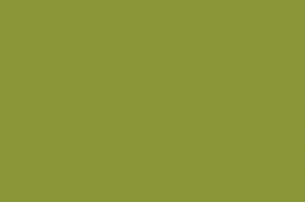 Оливковый 9423 (UV-лак)