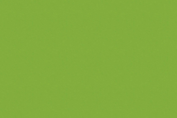 Зеленая Мамба 7190
