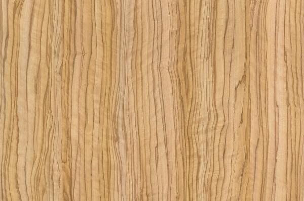 Маслина Севилья светлая 8912