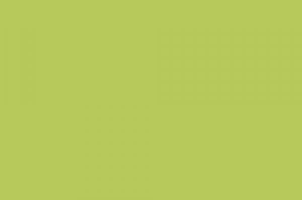 Белый Скандинавский / Лайм 1655-3601