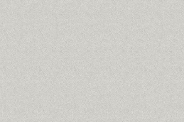 Холодный Серый 0191