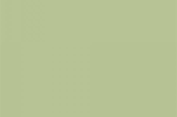 Салатовый 1863