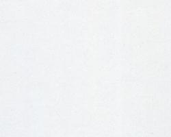Белый Фарфор 1620