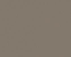 Серый Кашемир 2016