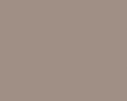 Глиняный серый K096