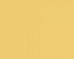 Желтый Нарцисс 1644